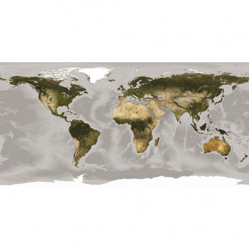 Vlies Fototapete Weltkarte topografisch