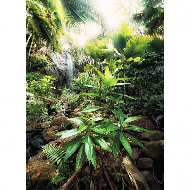 Vlies Fototapete Dschungel Regenwald
