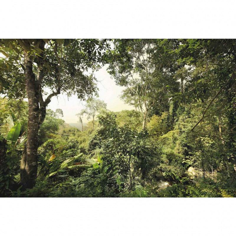 Vlies Fototapete Dschungel Busch