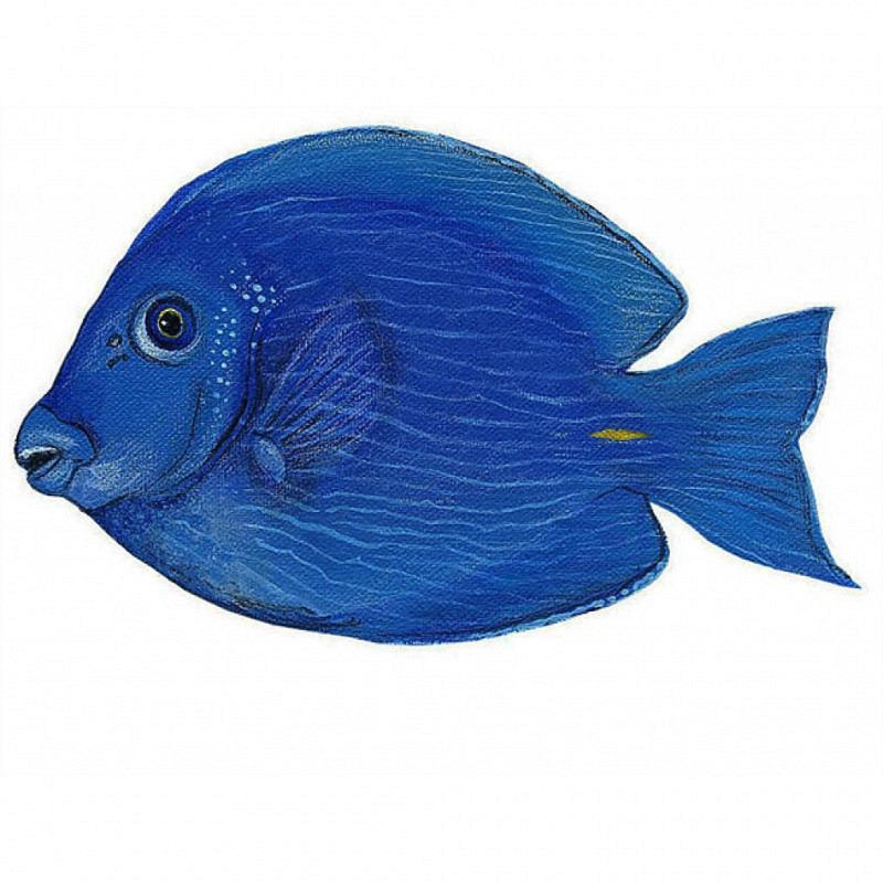 Wandsticker Wandtattoo Paletten Doktorfisch