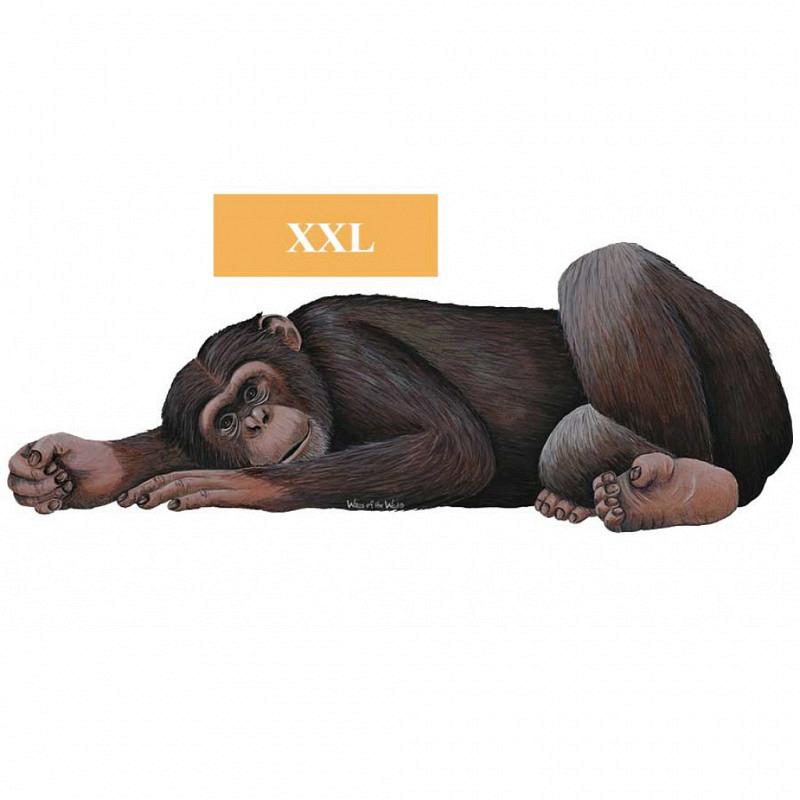 Wandsticker Regenwald Affe Schimpanse