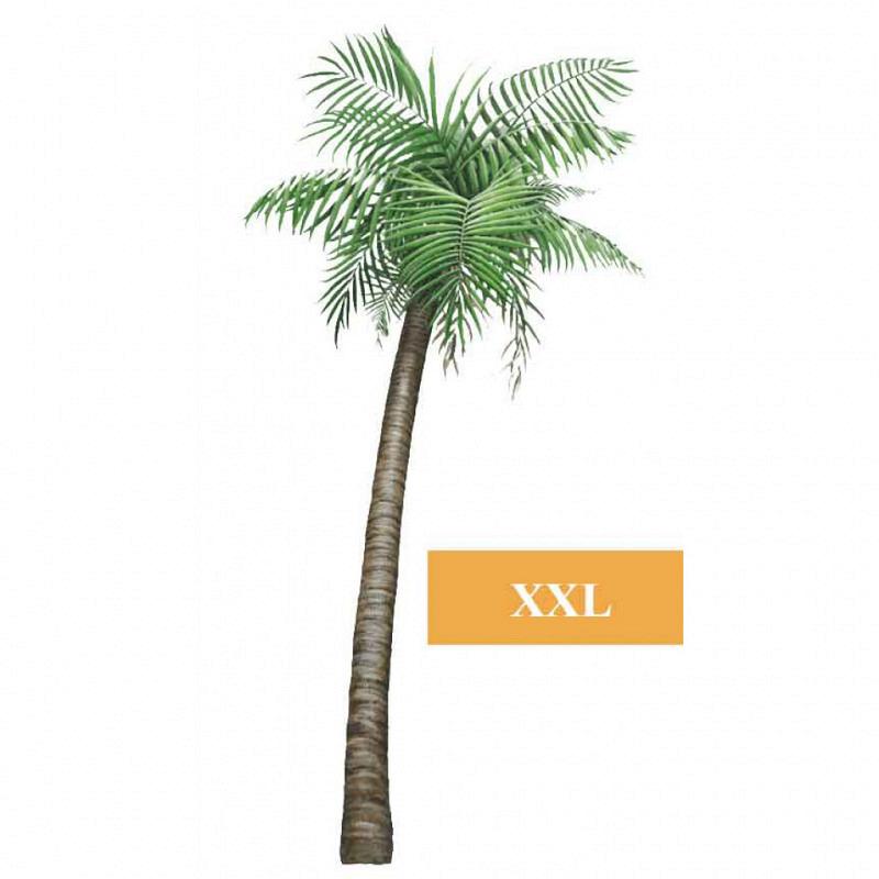 Wandsticker Dschungel Regenwald Pflanze Palme