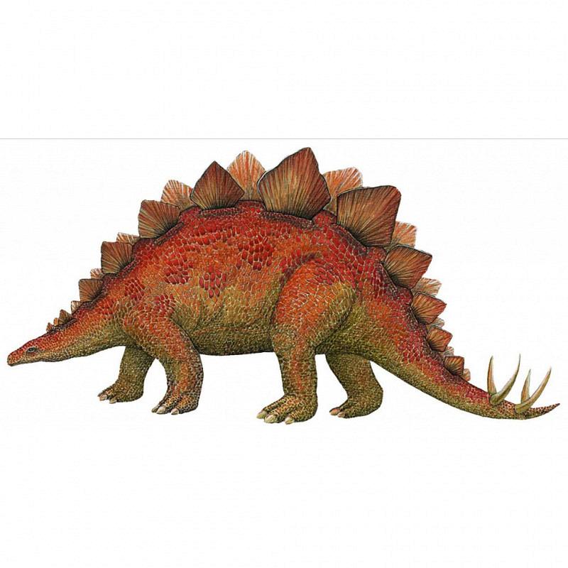Wandsticker Dinosaurier Stegosaurus klein