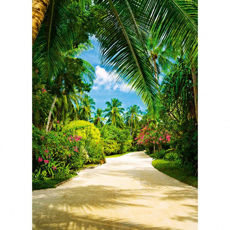 Fototapete Wandbild Weg ins tropische Paradies
