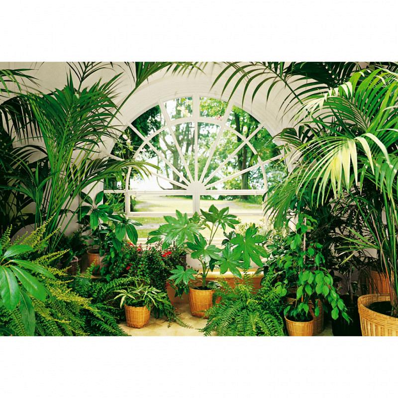 Fototapete Riesen Wandbild Wintergarten