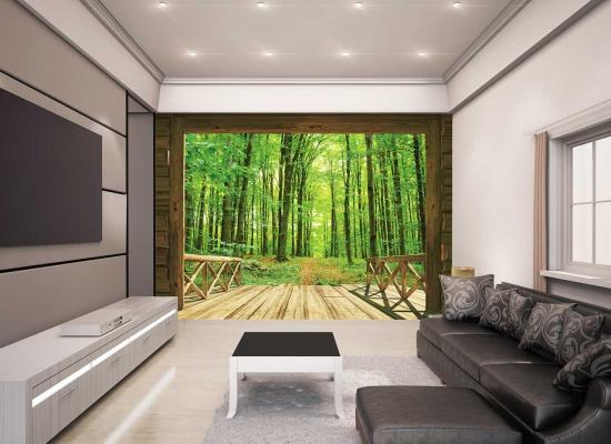 Fototapete waldweg  WALLTASTIC Fototapete Baum Bäume Wald Waldweg + Tapetenkleister ...