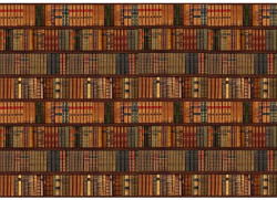 Fototapete Bibliothek Bücher