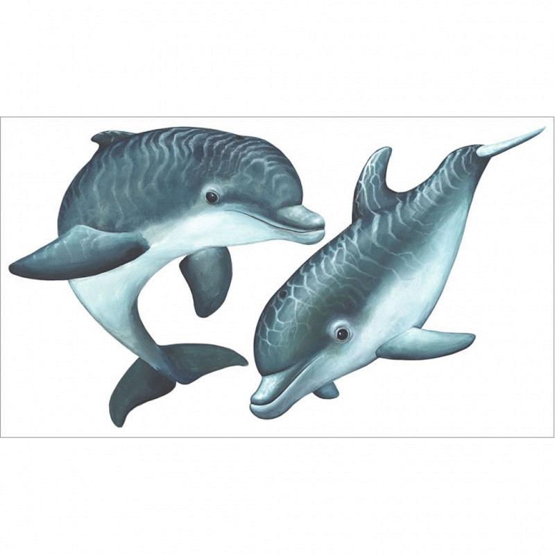 Wandsticker Delfinschule