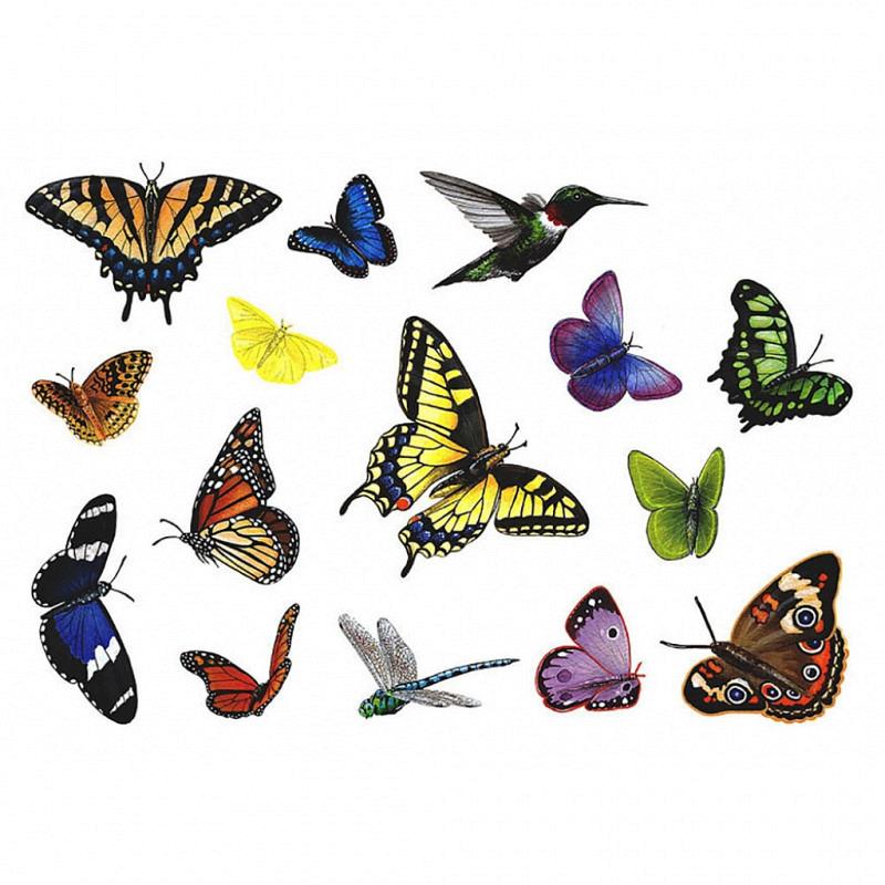 Wandsticker Regenwald Schmetterlinge