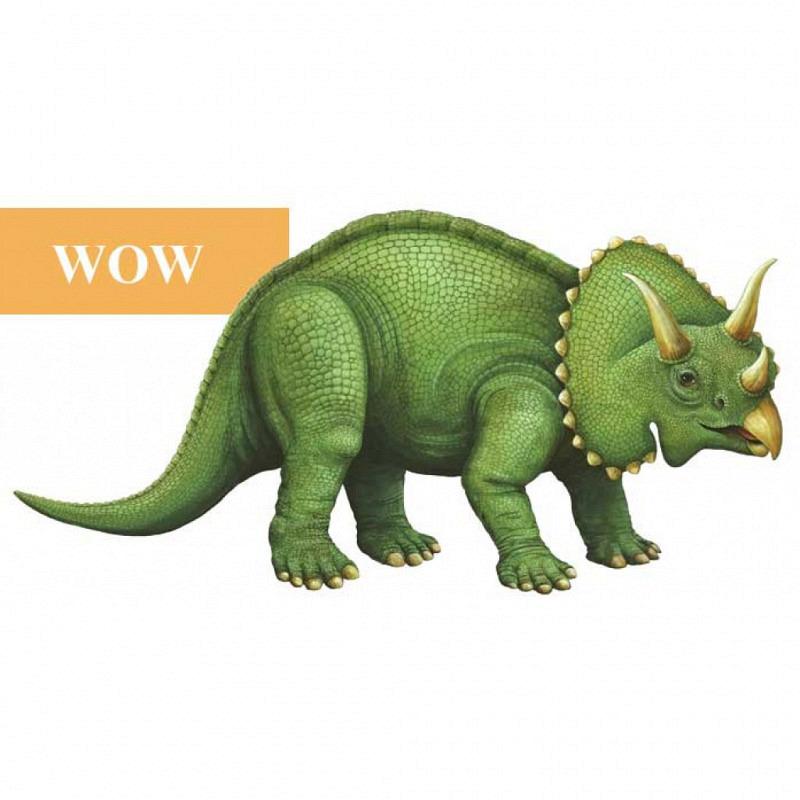 Wandsticker junger Triceratops WOW
