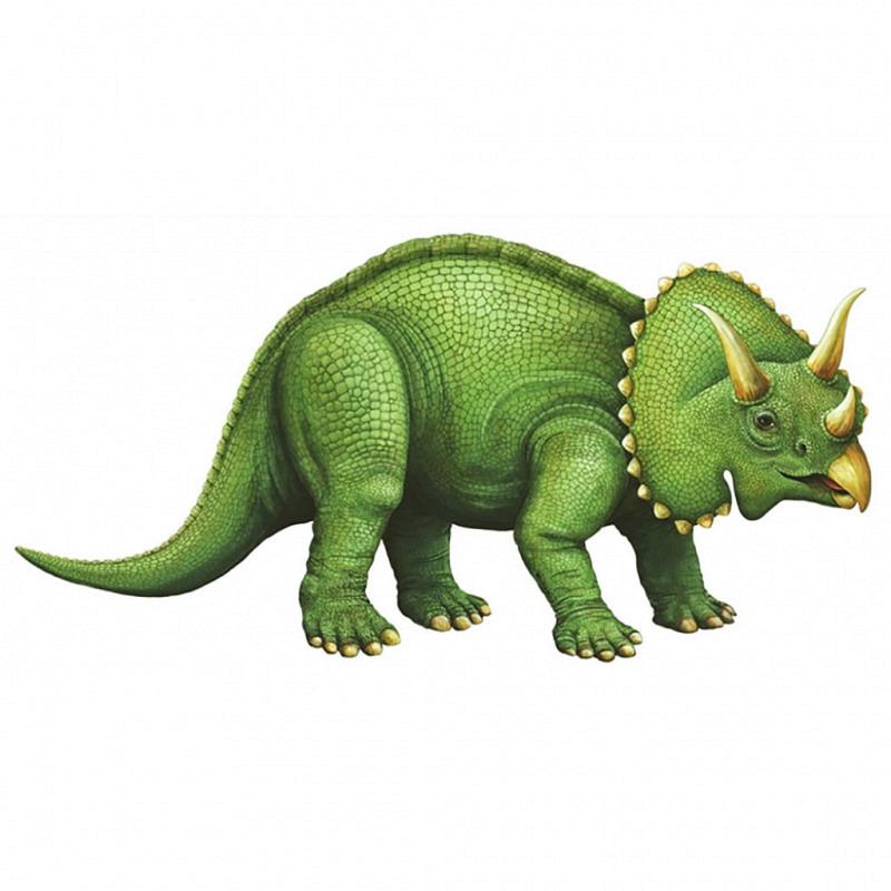 Wandsticker junger Triceratops klein