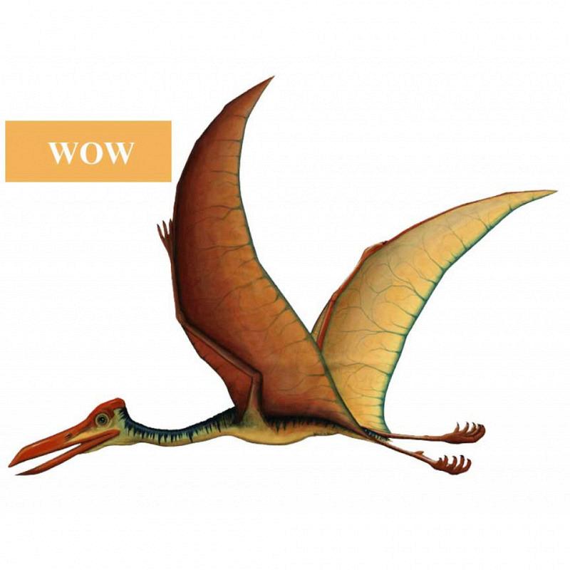Wandsticker Quetzalcoatlus WOW