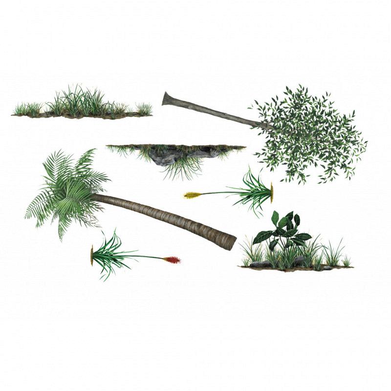 Wandsticker Dschungelpflanzen Bäume Set