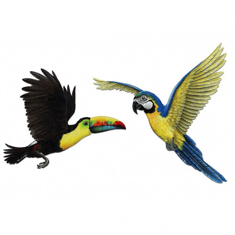 Wandsticker tropische Vögel