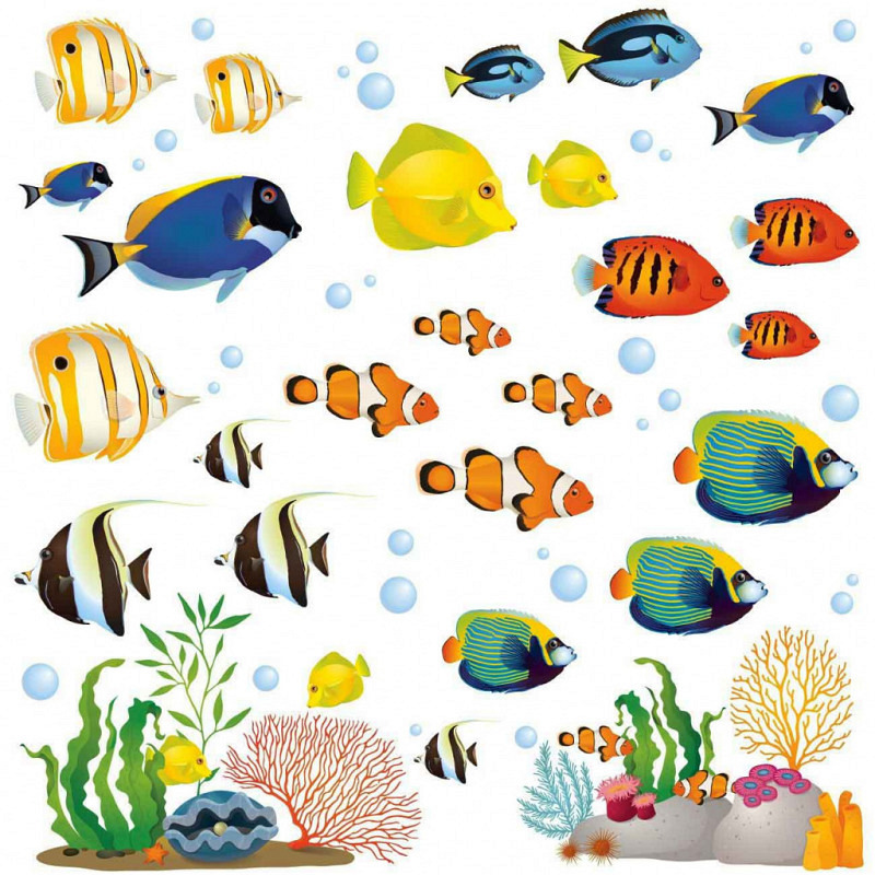 Wandsticker Korallenriff Fische