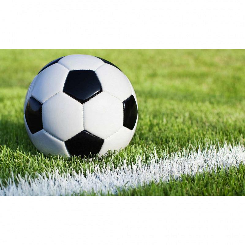 RoomMates Fototapete Fußball Rasen Wandbild