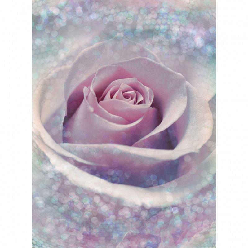 Vlies Fototapete Blütentraum Rose