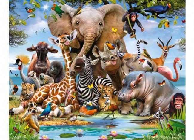 Fototapete Wildtiere Dschungel Safari