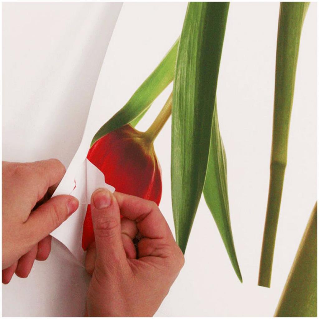 RoomMates Wandtattoo Wandsticker Tulpen Ablösbar und Wiederverwendbar