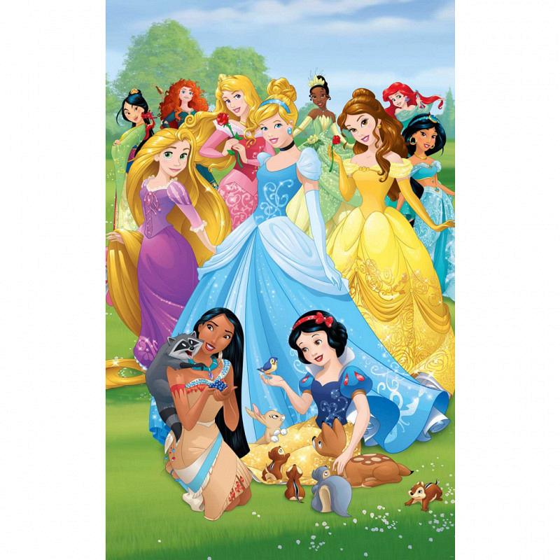 Fototapete Disney Princess Poster