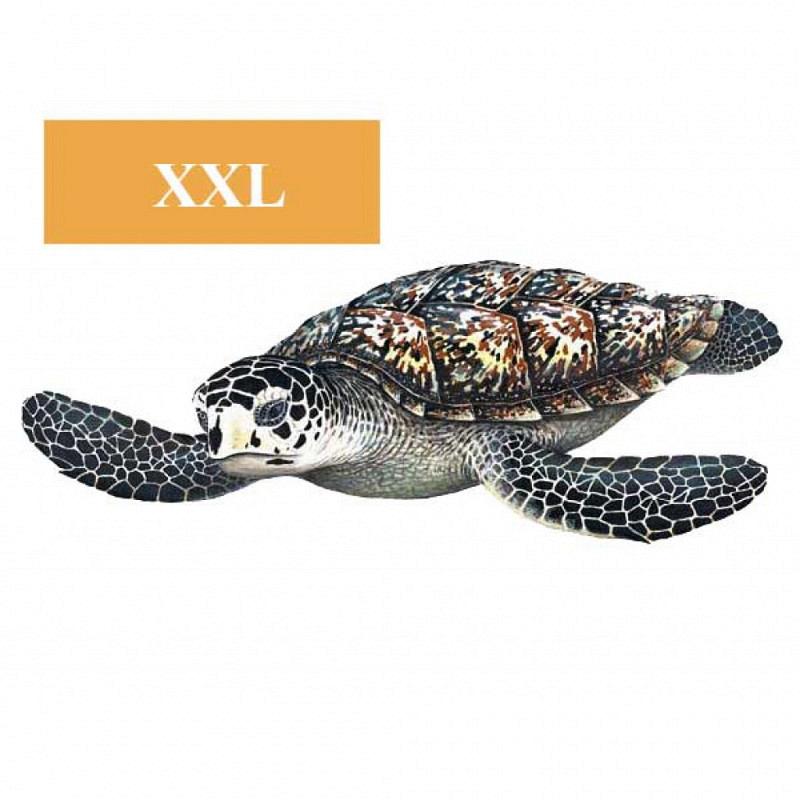 Wandsticker Wandtattoo Meeresschildkröte