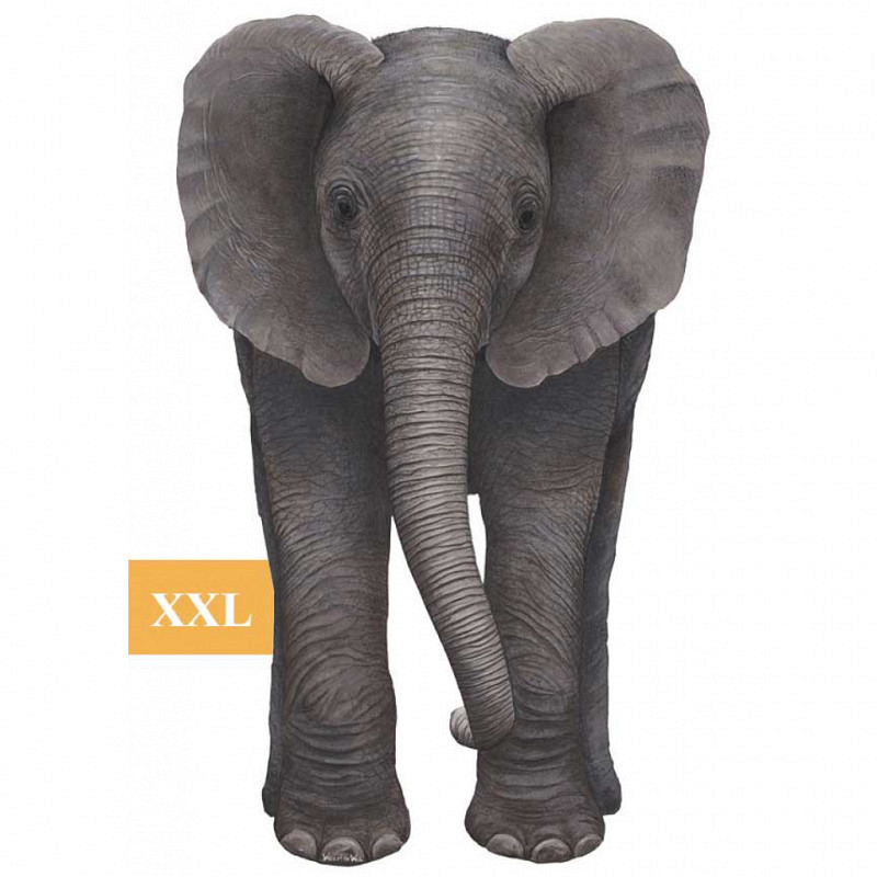 Wandsticker Dschungel Regenwald Elefantenbaby