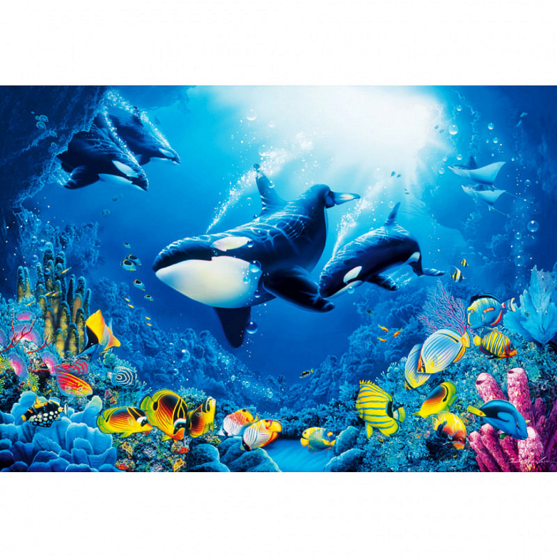 Wandbild Unterwasserwelt Fische Wale