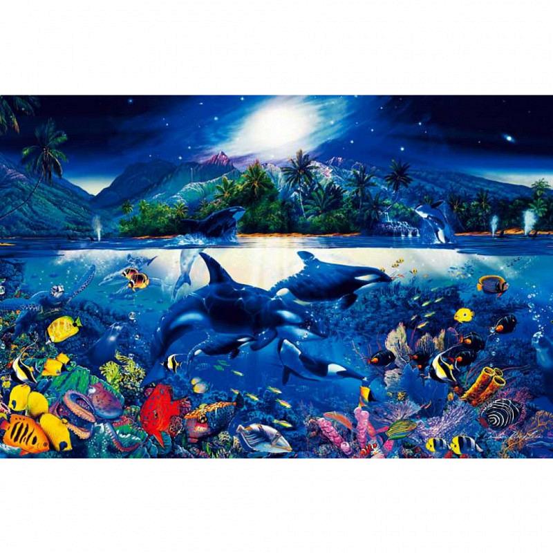 Wandbild Poster Unterwasser Schwertwale