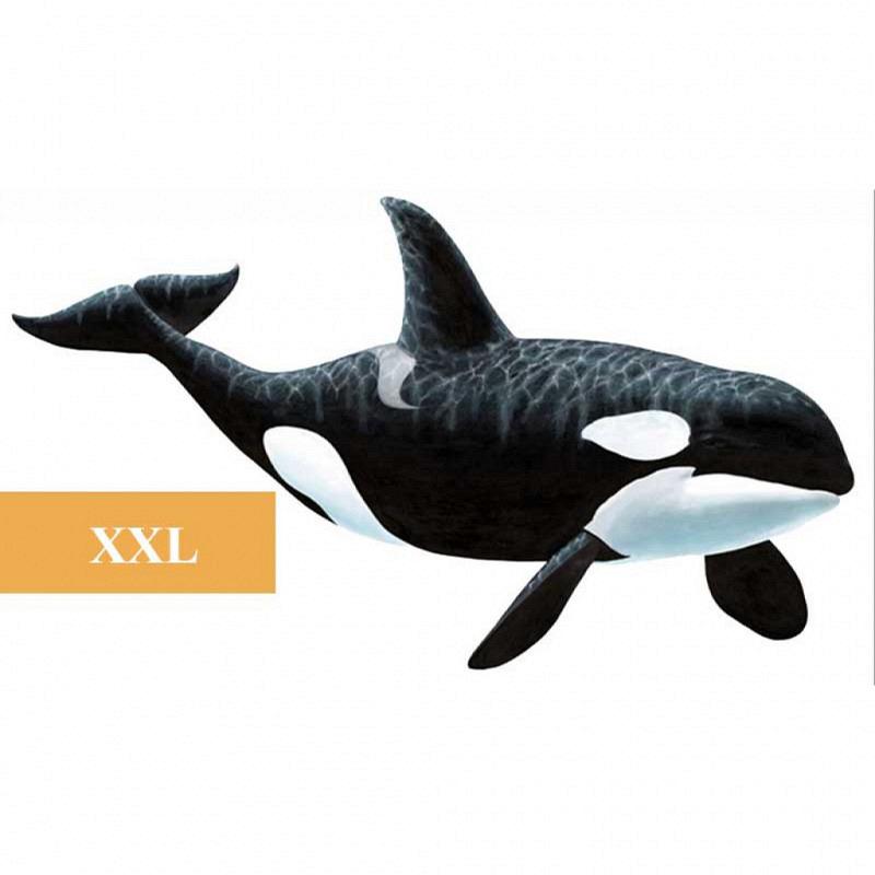Wandsticker Orca Schwertwal