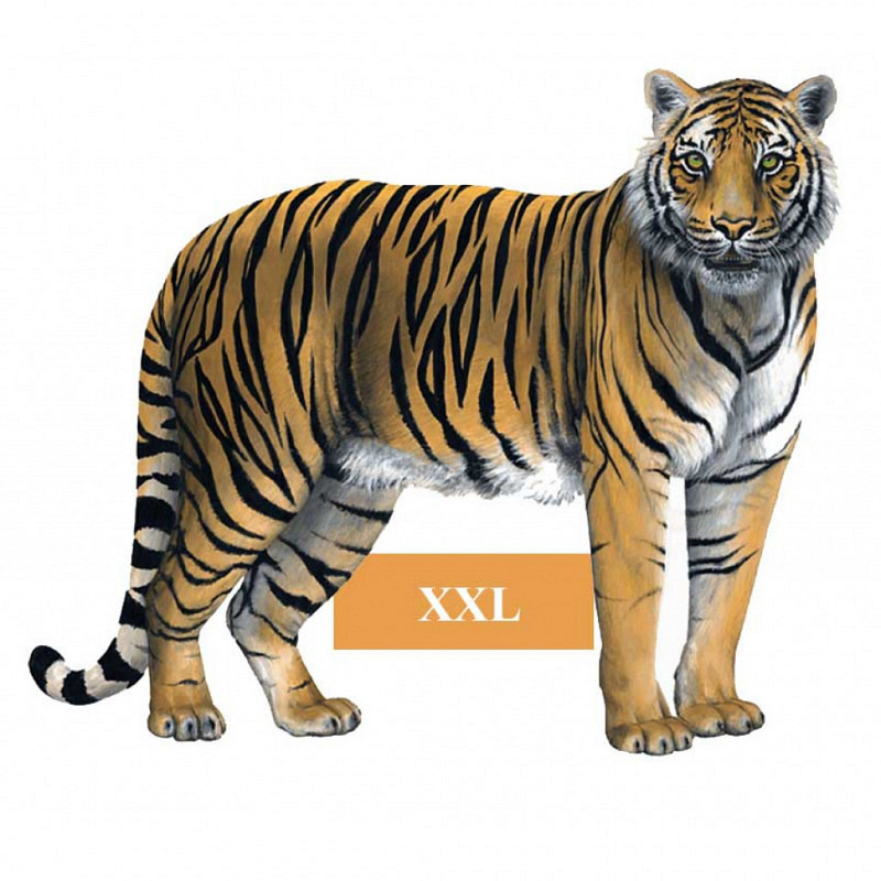 Wandsticker Dschungel Regenwald Tiger