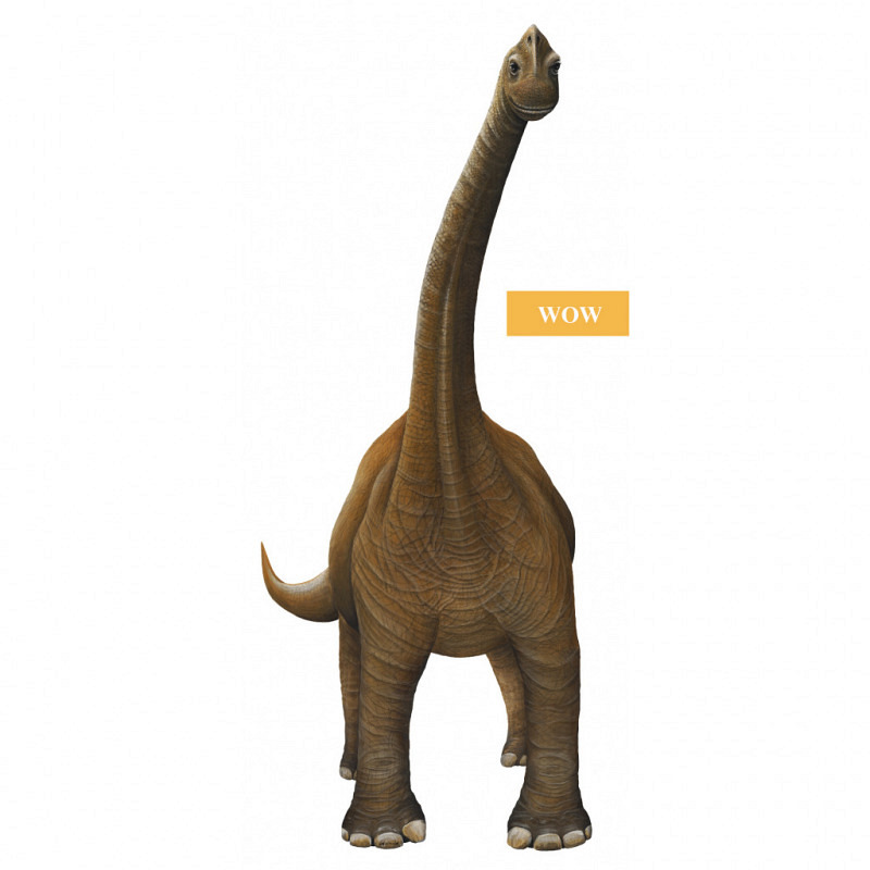 Wandsticker Bronchiosaurus WOW