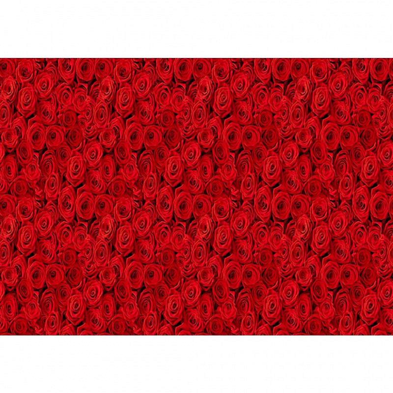 Fototapete Teppich rote Rosen