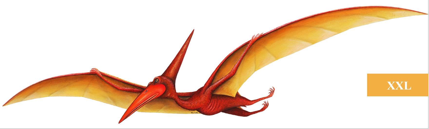 Wandsticker Dinosaurier Pterodactylus-Dinosaurier