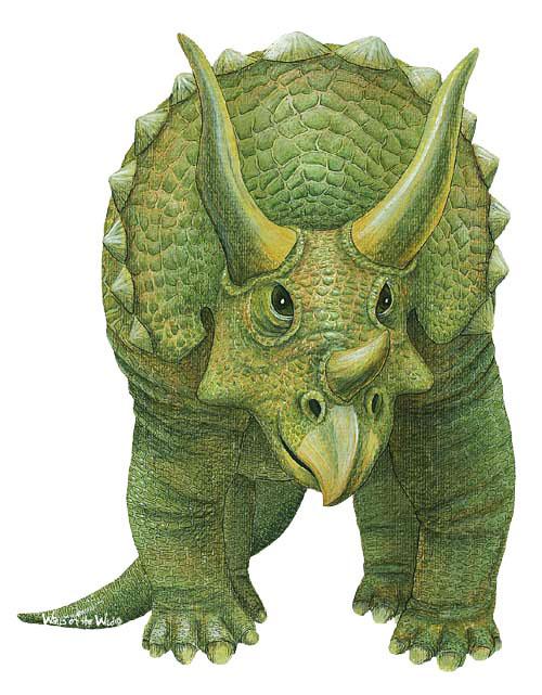 wandsticker dinosaurier triceratopsdinosaurier