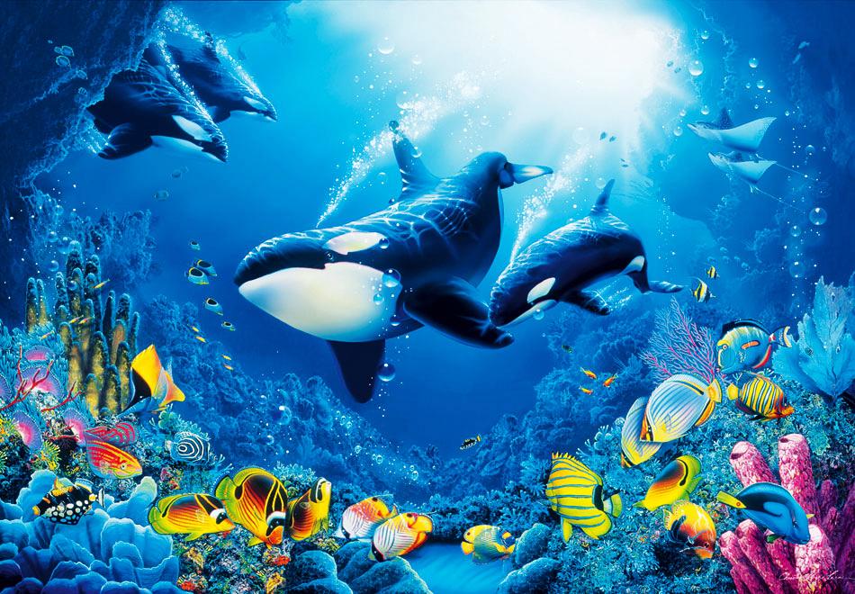 Fototapete kinderzimmer unterwasserwelt  Fototapete Wandbild XL Unterwasserwelt Fische Wale Meer 366cm x ...