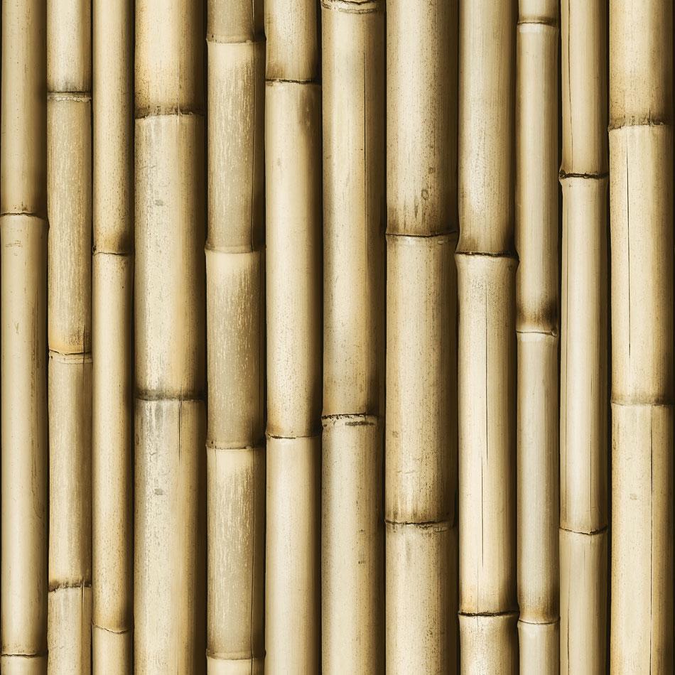 tapete bambus st be tapeten. Black Bedroom Furniture Sets. Home Design Ideas